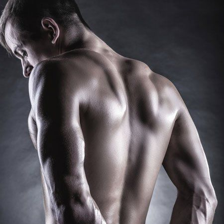 What part of the male body is most attractive? | Back